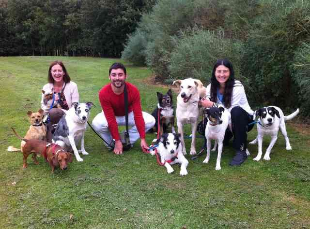 Anna, Jose, Lola and their 'four-legged-friends' having a break, on their journey from southern Spain to the UK.