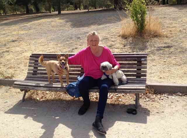 Gillian and Willow enjoying a break, in a park south of Madrid, on their journey from Sharnbrook in Beds to Mojácar in Spain.
